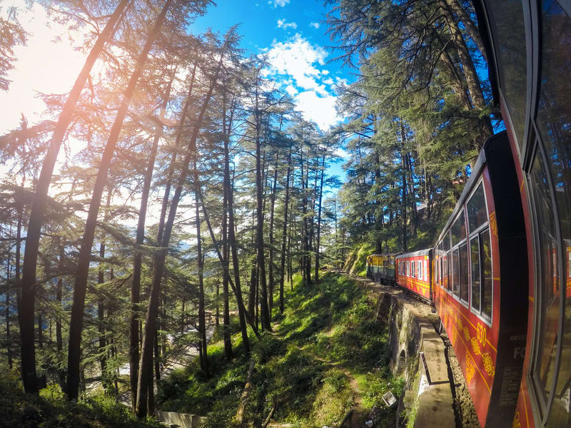 Day 2 Sightseeing in Shimla and Excursion to Kufri   A Haven for Nature Enthusiasts with Beautiful Hiking Trails