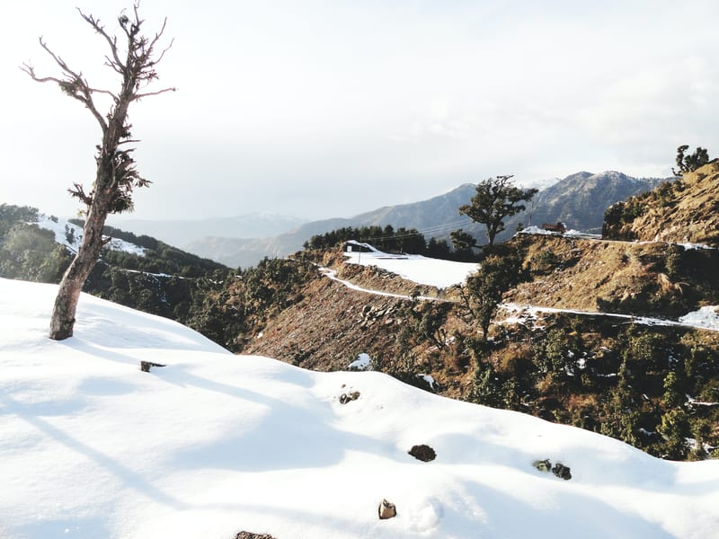 Day 1 Reach Shimla from Delhi | A Beautiful Town Encapsulated by Magical Misty Hills