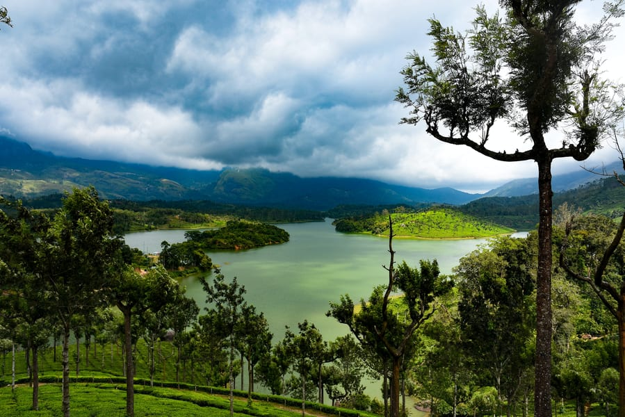 Day 2 Munnar | Explore the city to its best!